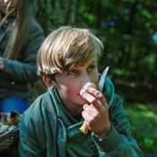 Afhold Naturens Dag i skoven og lav et svampearrangement